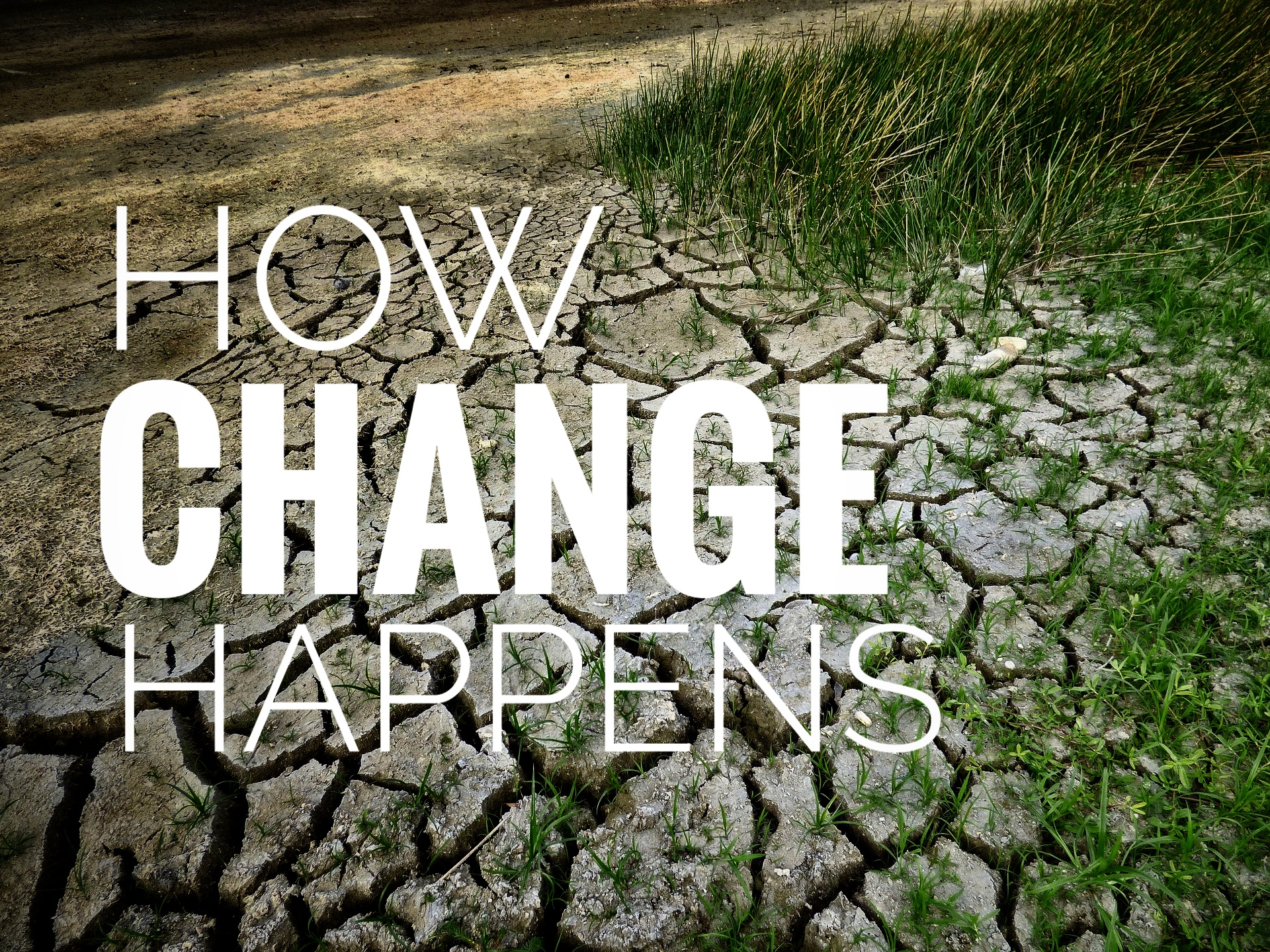 climate-change-2241061_1920-01.jpeg