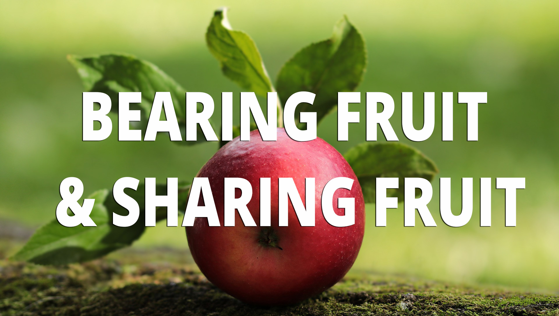sharing_fruit