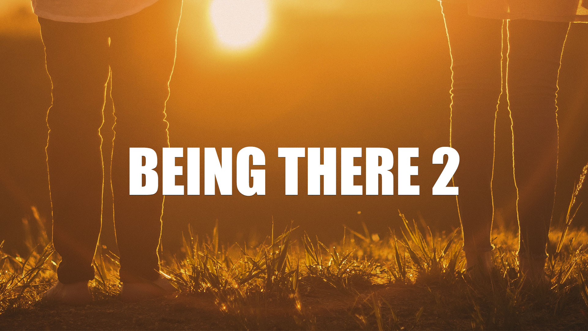 Being-There-2