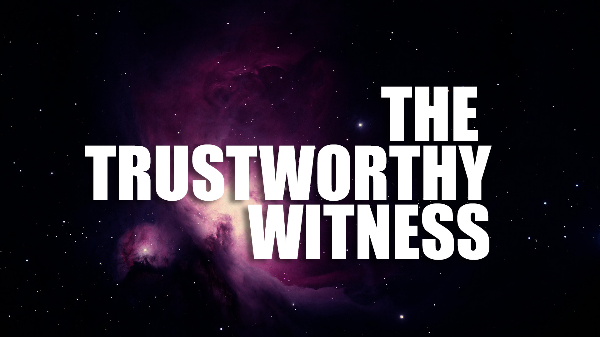 The-Witness