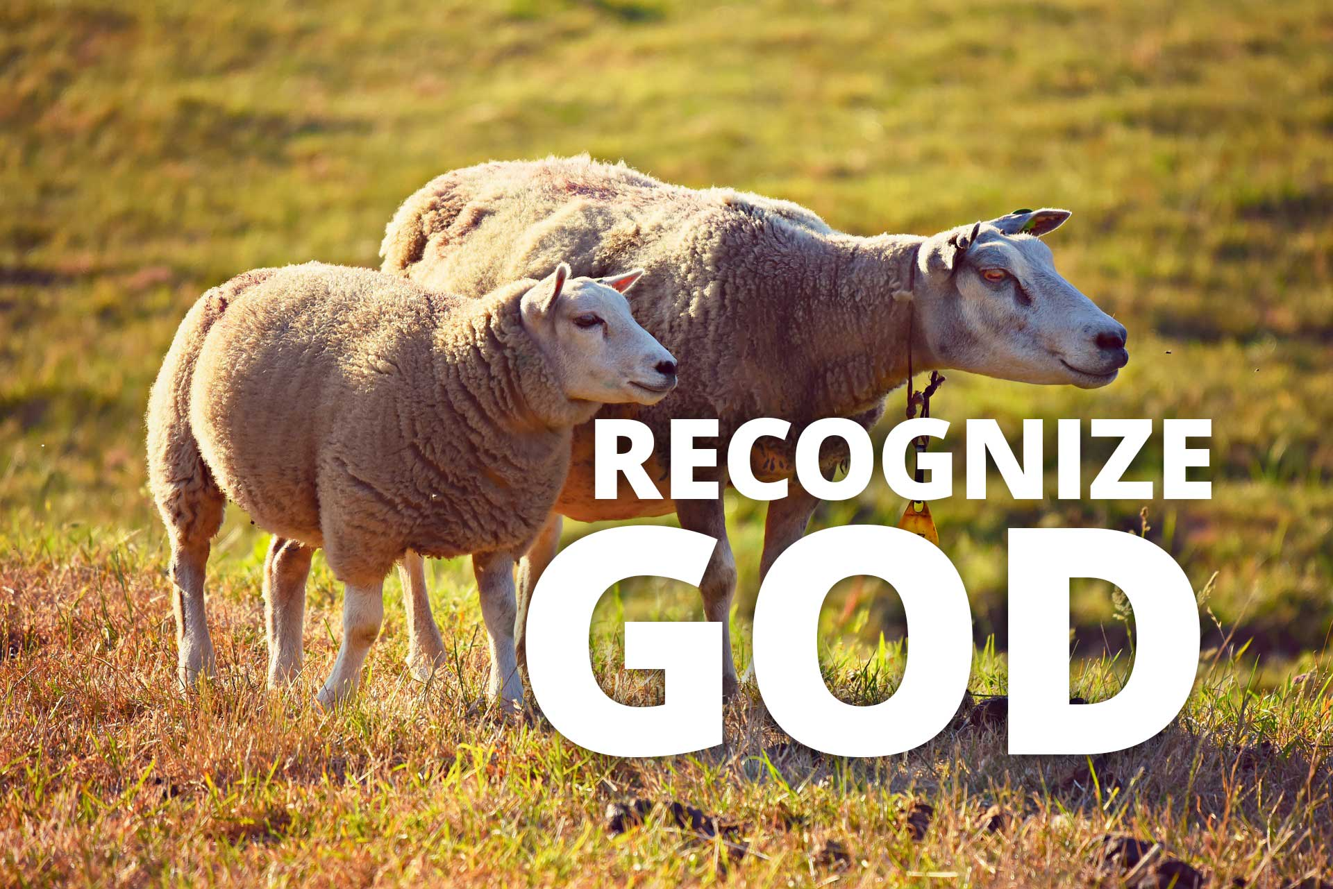 recognize-god